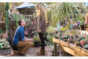 Danielle Poff proposal