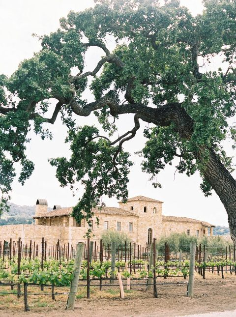 Entrance of sunstone villa with vineyards in foreground
